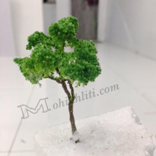 cây mẫu mô hình vm04-m11