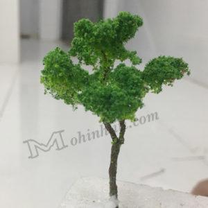 cây mẫu mô hình vm04-m16