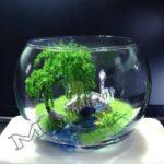 Mô hình phong cảnh nghệ thuật trong chậu thủy tinh
