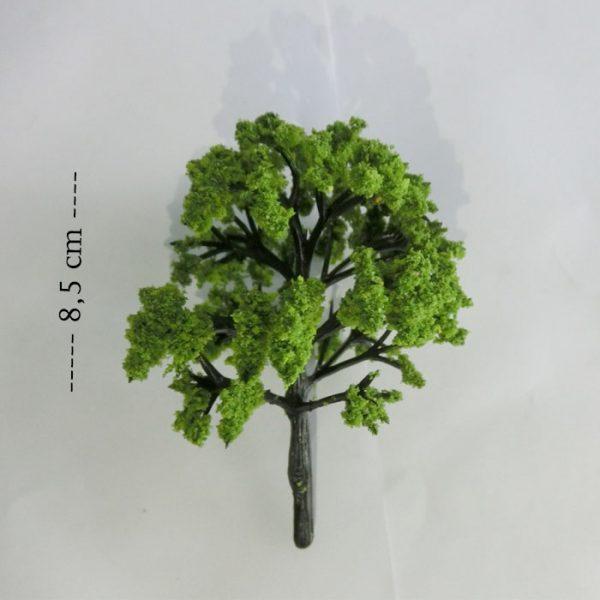 cây mô hình liti mẫu 56