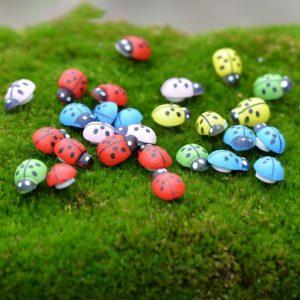 Mô hình bọ cánh cứng nhiều màu sắc