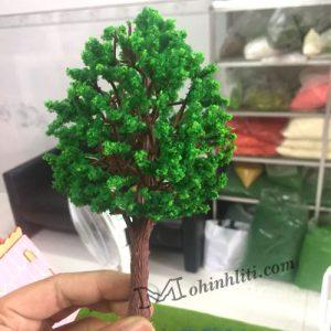 cây cao 16cm